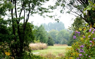 Bronte Creek Provincial Park, Main course, Hole 17 Tee pad