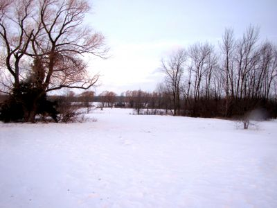Bronte Creek Provincial Park, Main course, Hole 5 Short tee pad