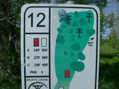 Bronte Creek Provincial Park, Main course, Hole 12 Short tee pad