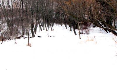 Bronte Creek Provincial Park, Main course, Hole 8 Short tee pad