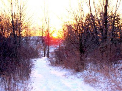 Bronte Creek Provincial Park, Main course, Hole 7