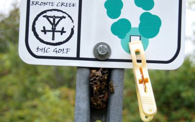 Bronte Creek Provincial Park, Main course, Hole 17 Hole sign