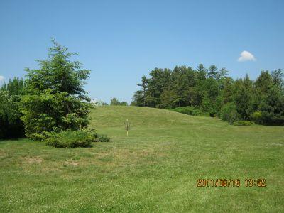 Riverview Park, Main course, Hole 5 Short approach