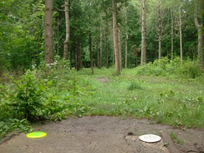 Waterworks, Main course, Hole 11 Short tee pad
