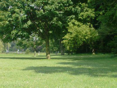 V.A. Barrie Park, Main course, Hole 15