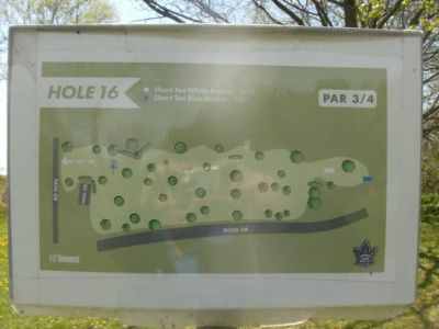 Toronto Island Park, Main course, Hole 16 Short tee pad