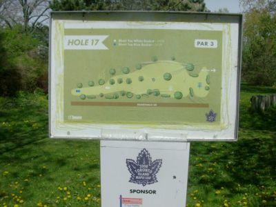 Toronto Island Park, Main course, Hole 17 Short tee pad