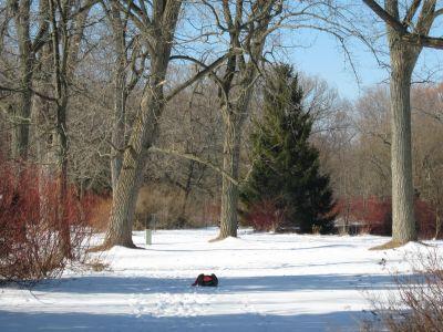 Toronto Island Park, Main course, Hole 4 Long approach