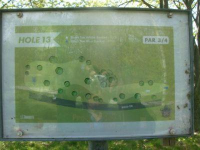 Toronto Island Park, Main course, Hole 13 Short tee pad