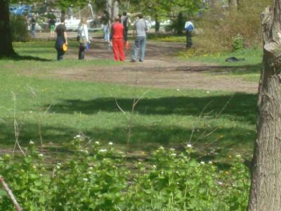 Toronto Island Park, Main course, Hole 8 Short tee pad