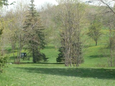 Centennial Park, Main course, Hole 24 Long tee pad