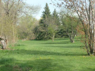 Centennial Park, Main course, Hole 25 Long tee pad
