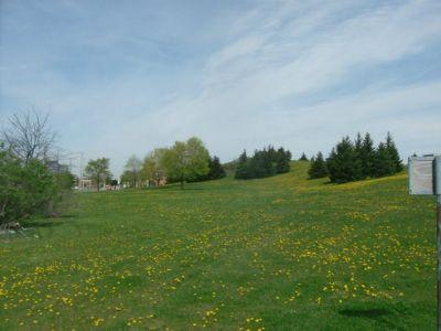 Centennial Park, Main course, Hole 4 Long tee pad