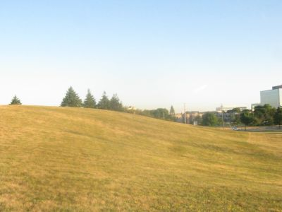 Centennial Park, Main course, Hole 6 Short tee pad