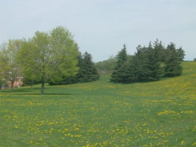 Centennial Park, Main course, Hole 4 Short tee pad