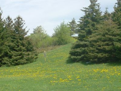 Centennial Park, Main course, Hole 4 Long approach