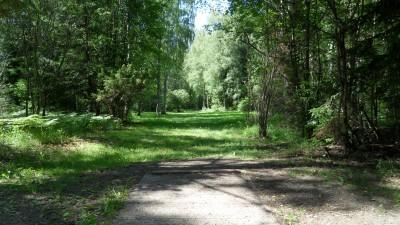 Lillsjöns Discgolfbana, Main course, Hole 6 Tee pad