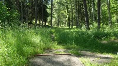 Lillsjöns Discgolfbana, Main course, Hole 15 Tee pad