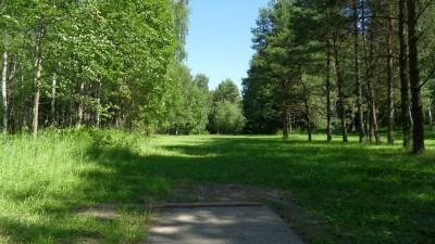 Lillsjöns Discgolfbana, Main course, Hole 3 Tee pad
