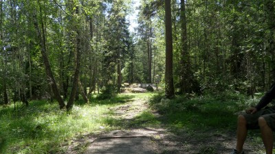 Lillsjöns Discgolfbana, Main course, Hole 16 Tee pad
