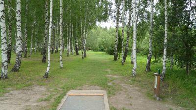 Järva Discgolf Park, Main course, Hole 4 Tee pad