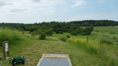 Järva Discgolf Park, Main course, Hole 14 Tee pad
