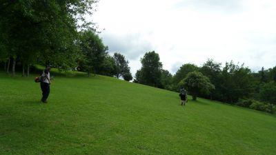Järva Discgolf Park, Main course, Hole 17 Long approach