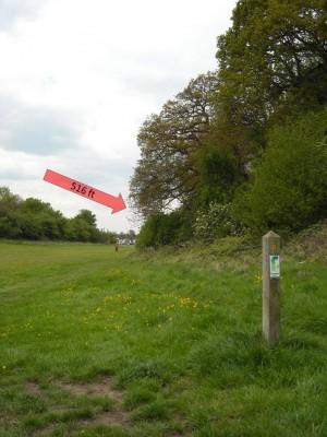 Lloyd Park, Main course, Hole 6 Tee pad