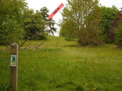 Lloyd Park, Main course, Hole 13 Tee pad