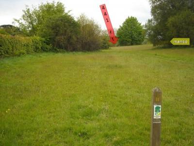 Lloyd Park, Main course, Hole 11 Tee pad