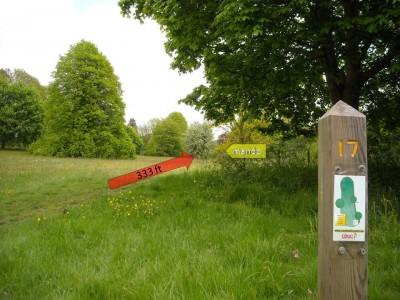 Lloyd Park, Main course, Hole 17 Tee pad