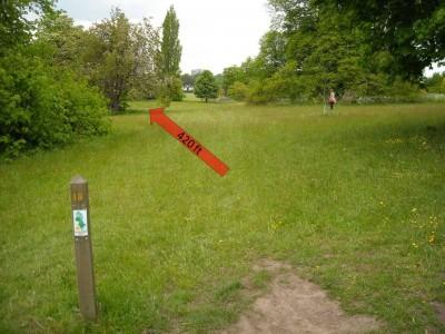 Lloyd Park, Main course, Hole 18 Tee pad