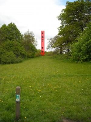 Lloyd Park, Main course, Hole 3 Tee pad