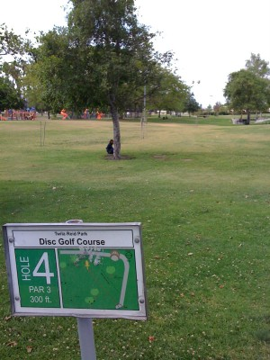 Twila-Reid Park, Main course, Hole 4 Tee pad