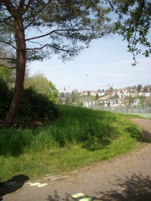 Zürich-Hardhof, Main course, Hole 6 Tee pad