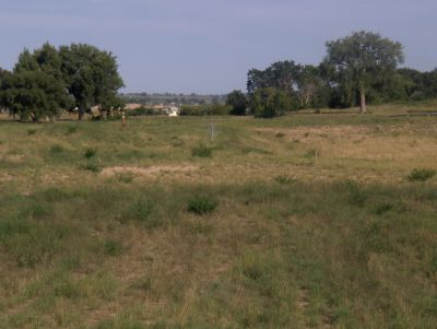 River Ranch Disc Golf Course, Main course, Hole 10 Tee pad