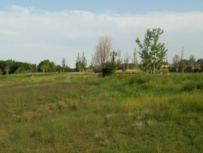 River Ranch Disc Golf Course, Main course, Hole 7 Tee pad