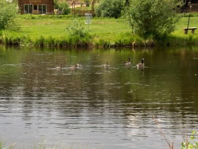 Beaver Meadows Resort Ranch, Main course, Hole 10