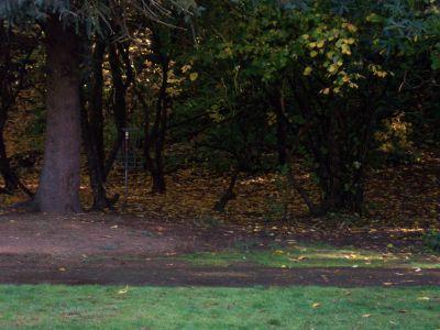 Leverich Park, Main course, Hole 3 Midrange approach