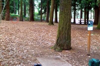 Leverich Park, Main course, Hole 8 Tee pad
