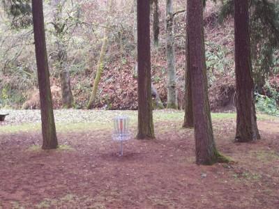 Leverich Park, Main course, Hole 4 Midrange approach