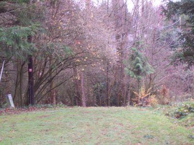 Leverich Park, Main course, Hole 11 Reverse (back up the fairway)