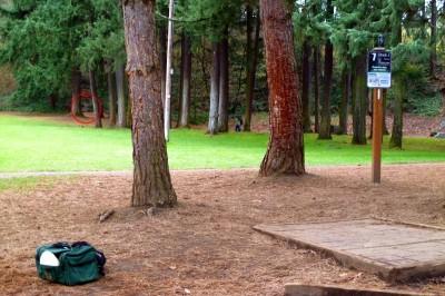 Leverich Park, Main course, Hole 7 Tee pad
