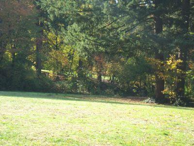 Leverich Park, Main course, Hole 5 Tee pad