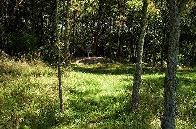 Fort Custer Recreation Area, Beach Course, Hole 8 Short approach