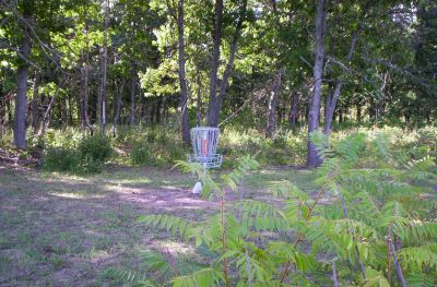 Fort Custer Recreation Area, Beach Course, Hole 5 Short approach