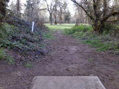 Waterloo, Main course, Hole 18 Tee pad