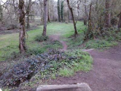 Waterloo, Main course, Hole 3 Tee pad