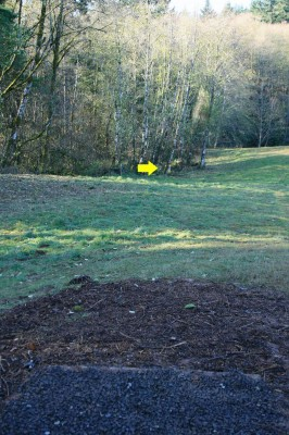 Horning's Hideout, The Highlands, Hole 4 Tee pad