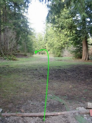 Mossy Roc, Main course, Hole 11 Tee pad